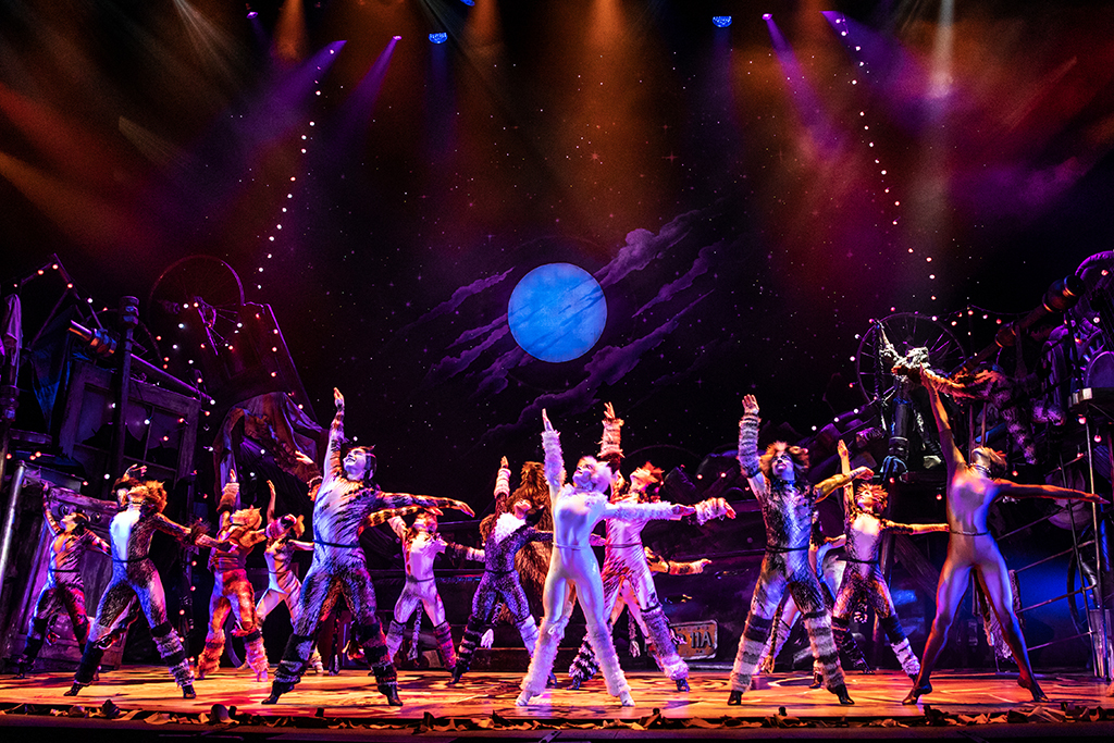 The North American Tour Company of CATS at the Marcus Center in Milwaukee